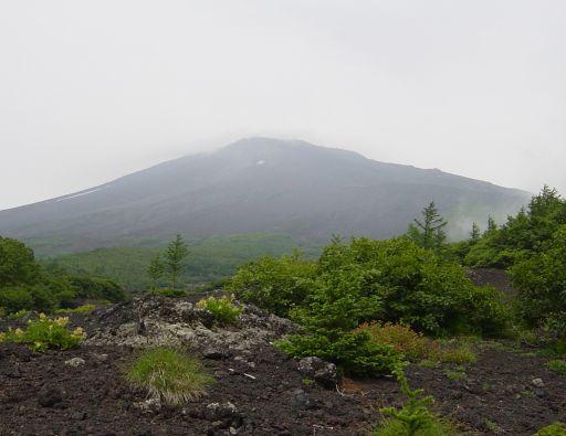 下から見上げた今日の富士山山頂だ!