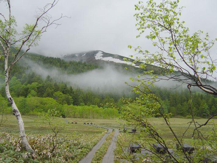 尾瀬ヶ原から至仏山を眺める
