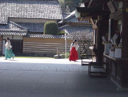 忙しそうに歩く神職さんと、しずしずと歩いていく巫女さん。