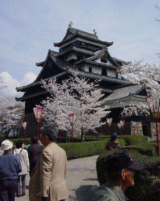 見慣れた小田原城と比べるとずいぶん素朴な松江城の天守閣。