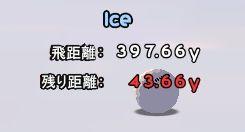 氷の上がめっちゃ転がるよ!